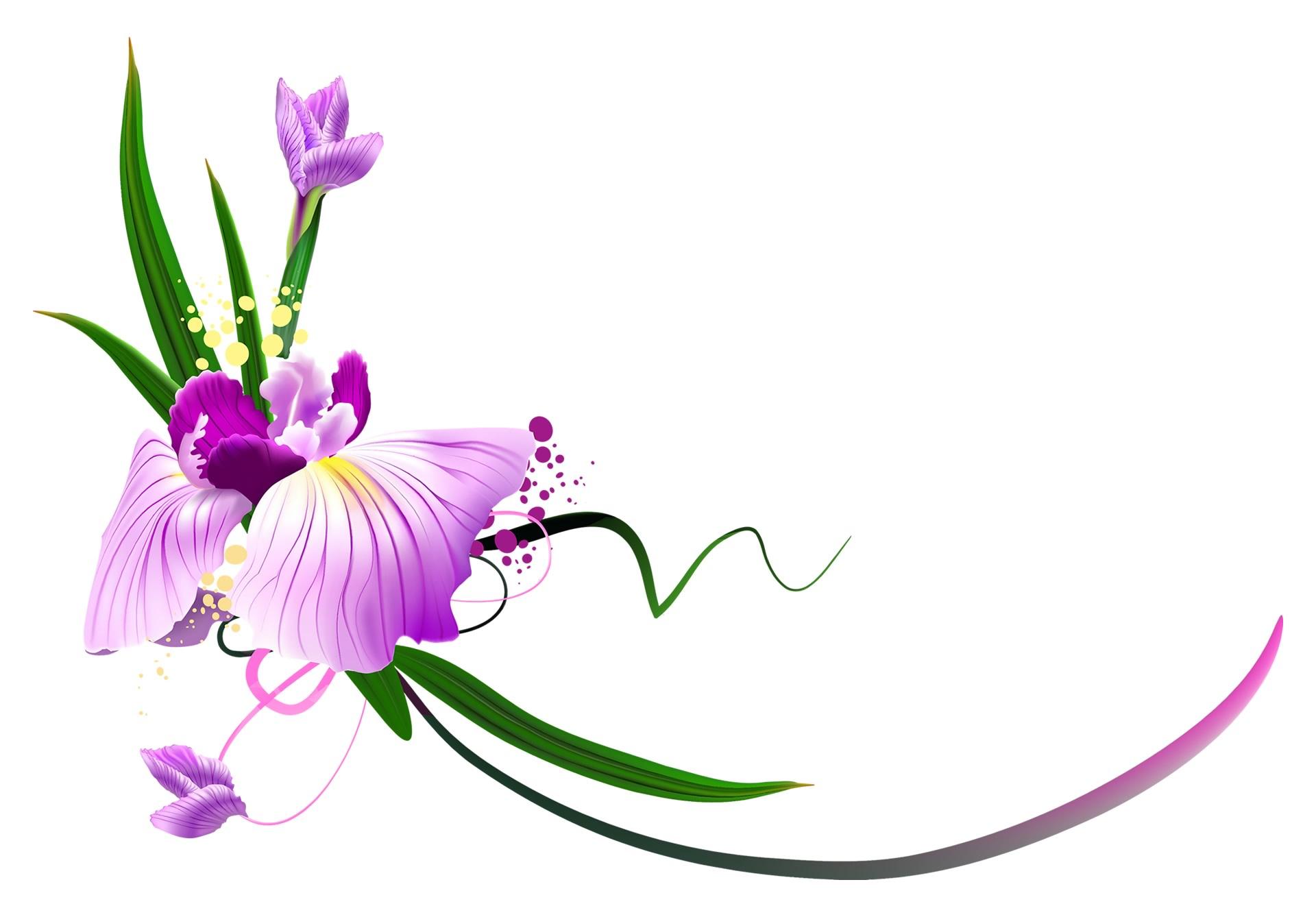 logomark - CDC Floral